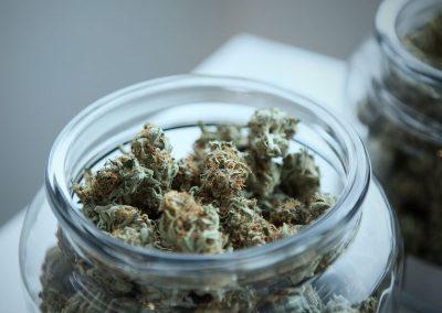 chemmy jones cannabis strain